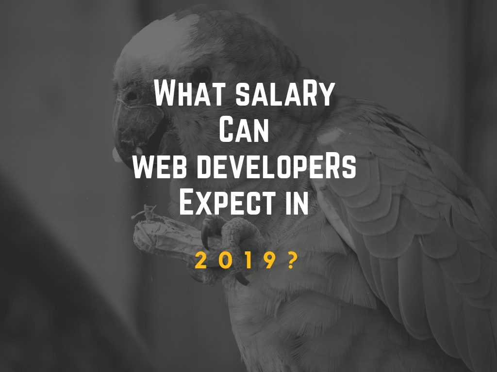 What Salary Can Web Developers Expect In 2019?