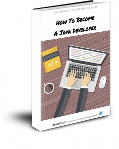 eBook - Java Developer 3D Book